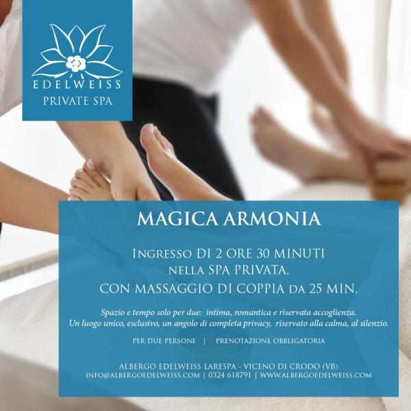 Magica Armonia